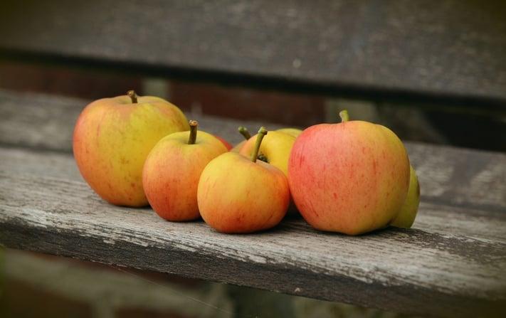 apple-1674619_1920.jpg